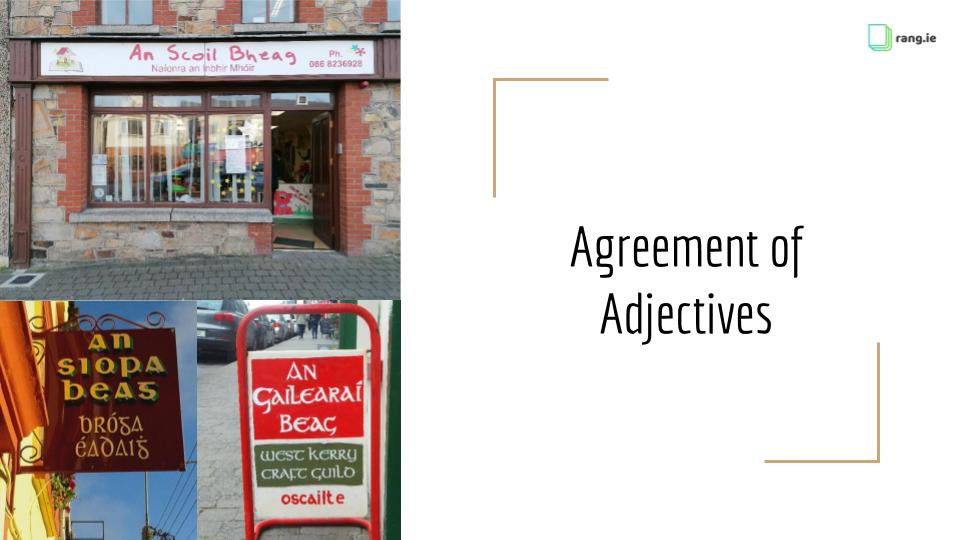 1.1 Agreement of Adjectives